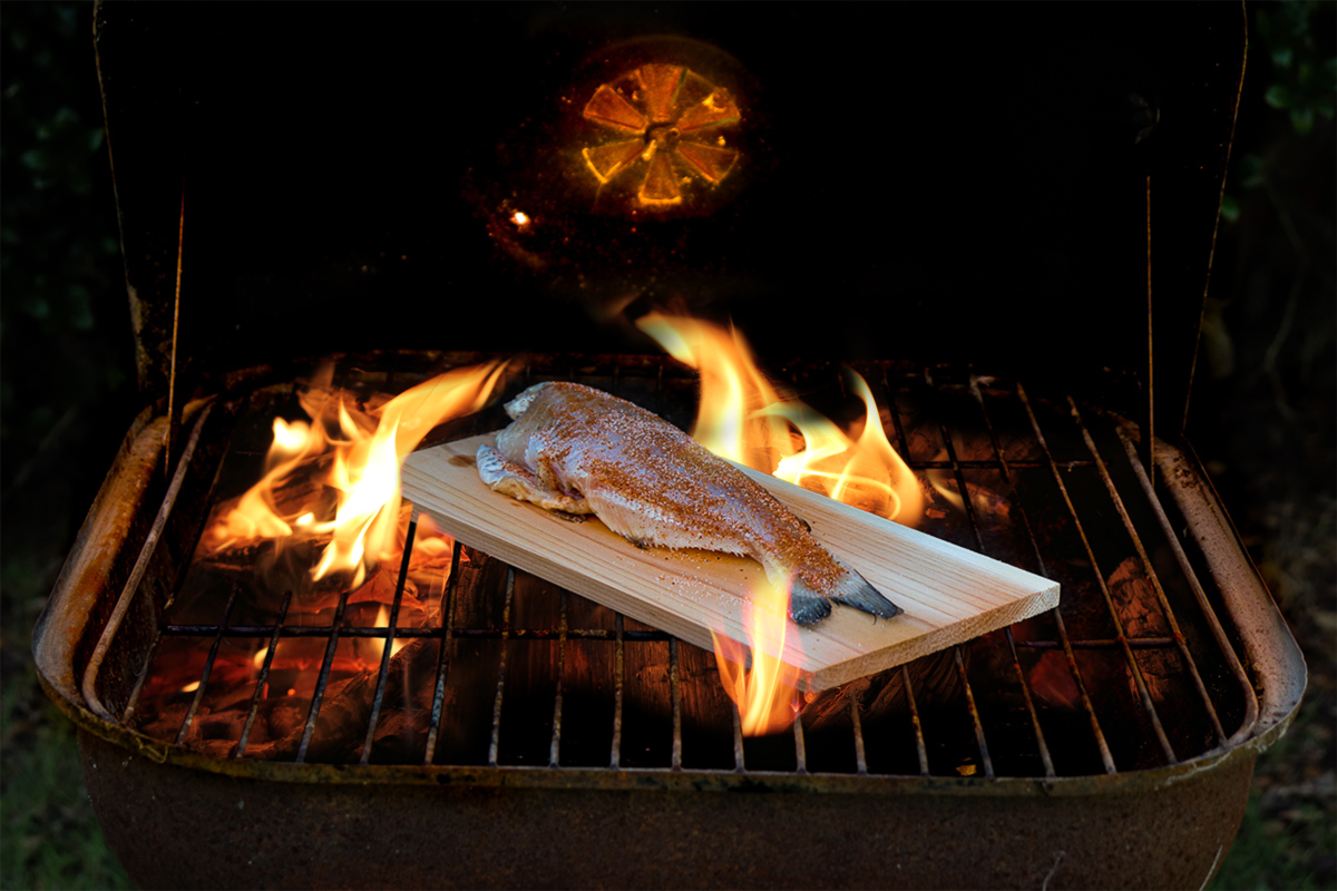 Whole catfish on cedar plank on grill with flames