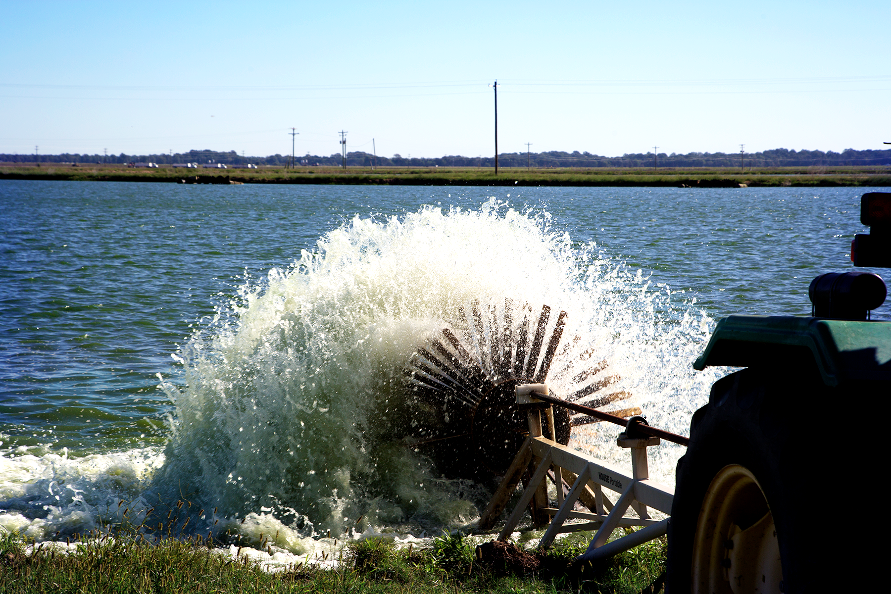 Delta Aquaculture on the Rise