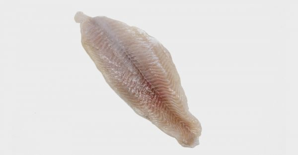 raw Catfish Fillet