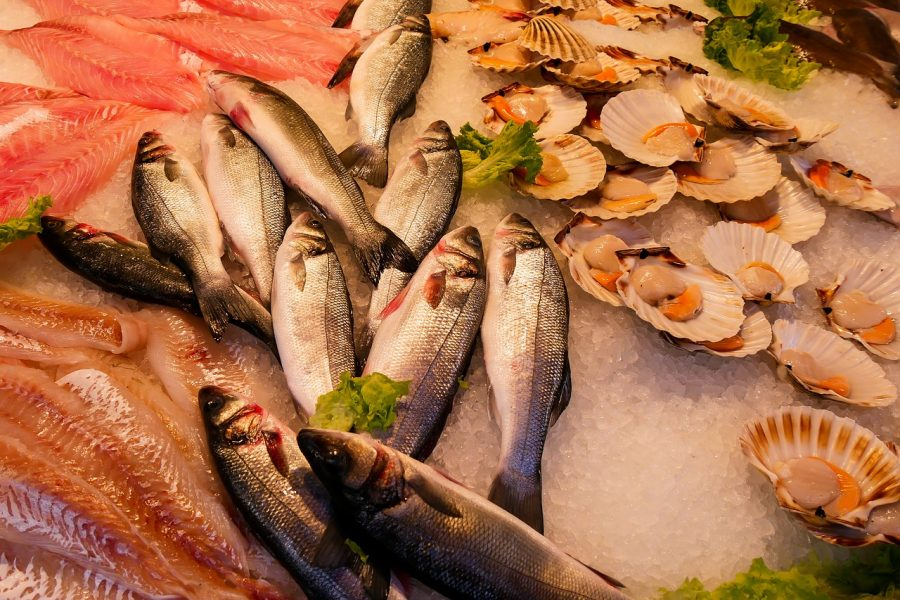 What Fish Should You Avoid?