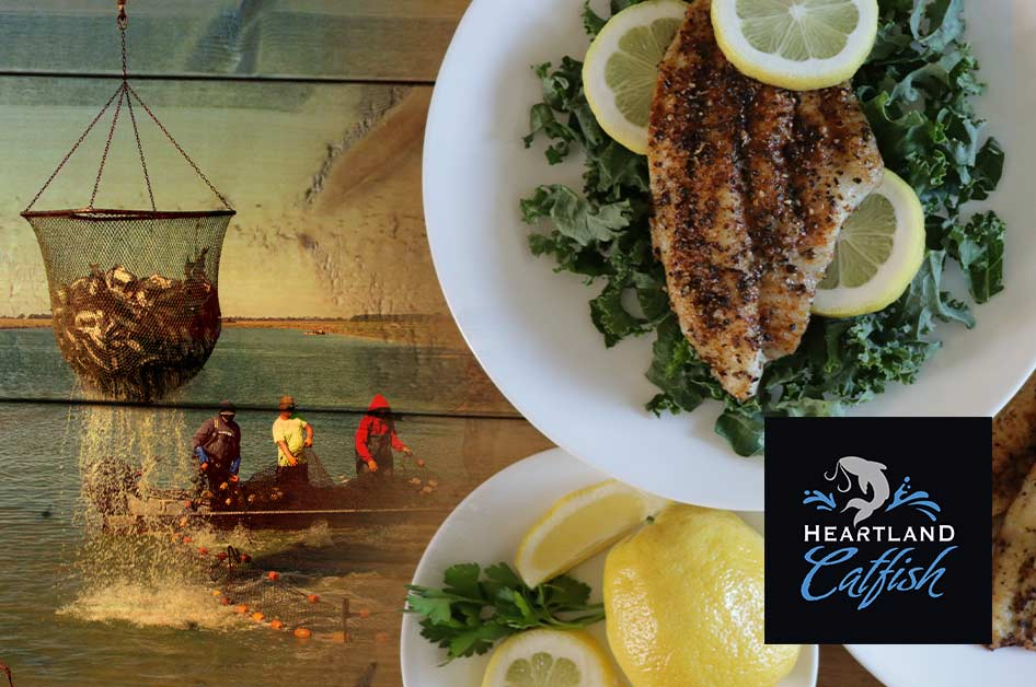 Farm-to-Table Fish: Choosing U.S. Farm-Raised Catfish